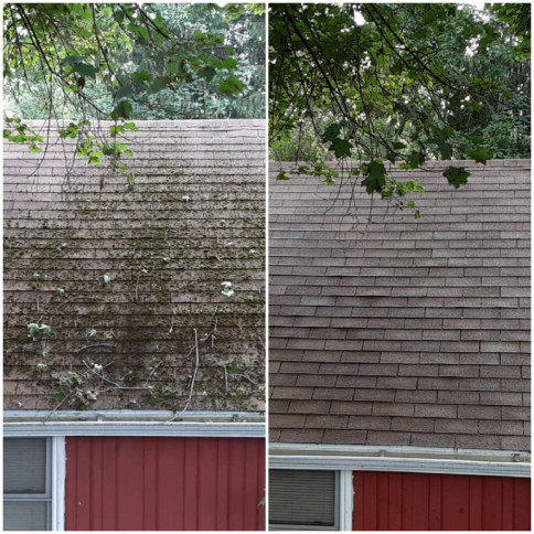 roof cleaning in johnson city ny